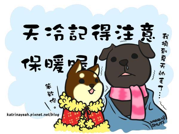 (圖/取自網路)