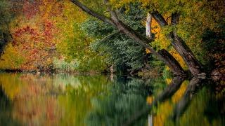 autumn-994897_1280