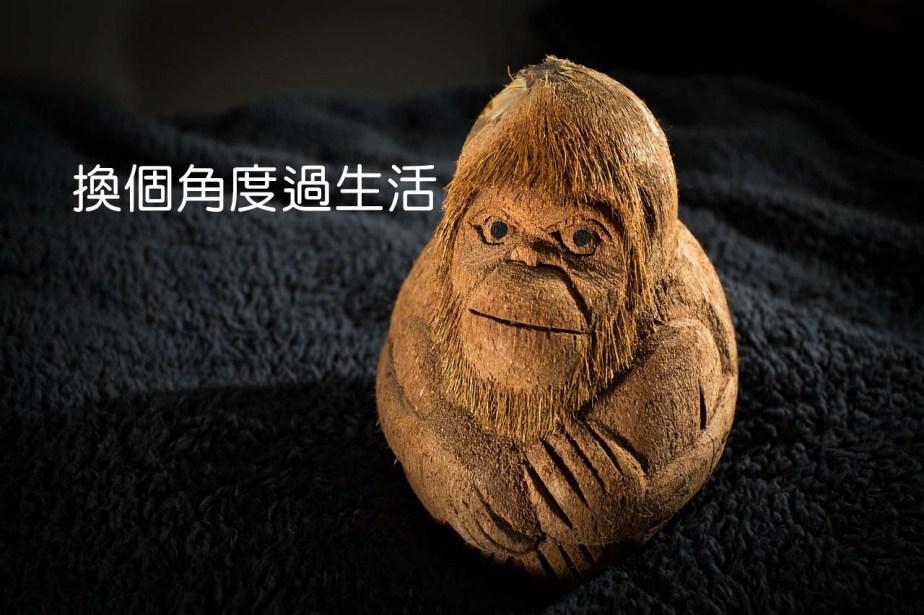 monkey-166271_1280-2