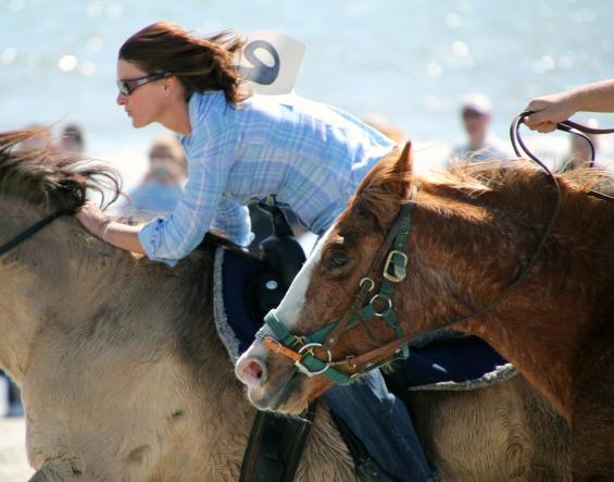 horse-race-173388_1280