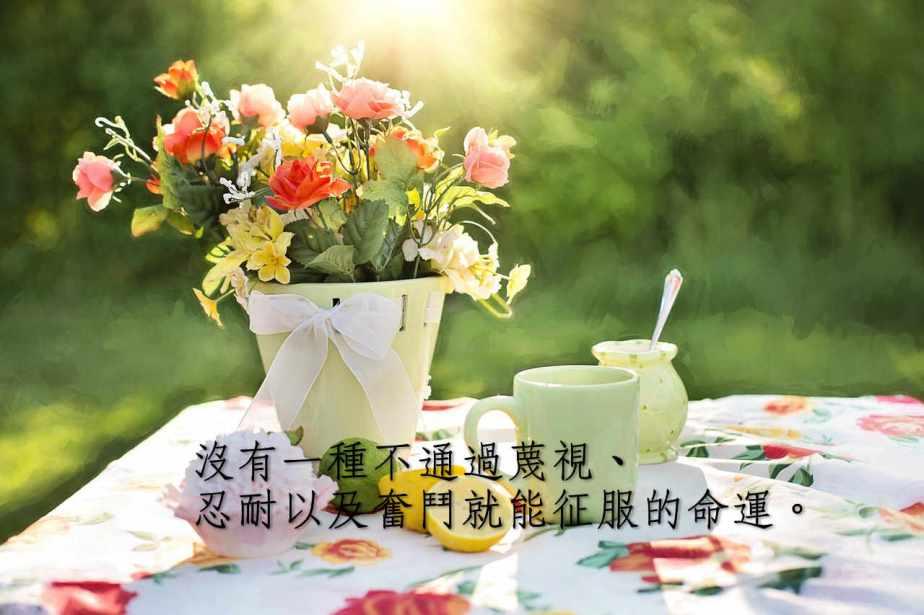 summer-still-life-783347_1280-2