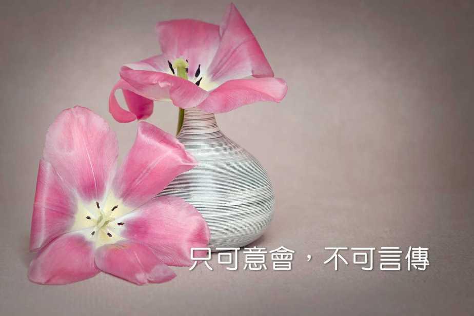 flower-1374867_1280-2