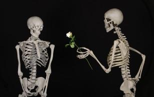 skeletal-601213_1280