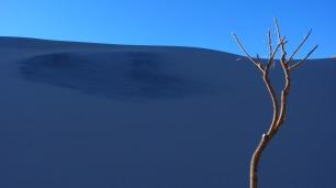 dune-74567_1280