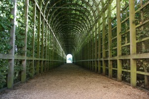 green-tunnel-252853_1280