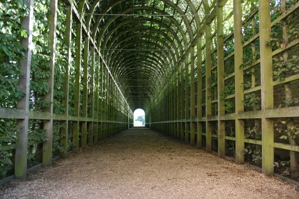 green-tunnel-252853_1280