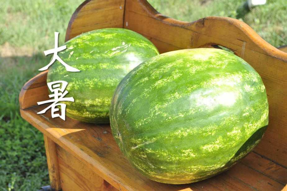 melon-897446_1280-2