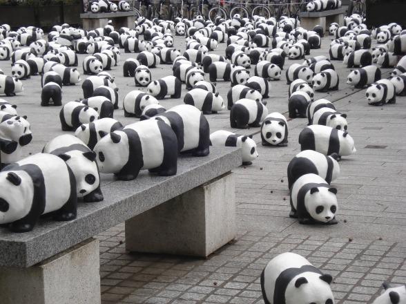 pandas-656891_1280