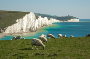 seven-sisters-997357_1280