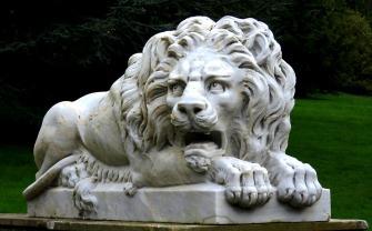 lion-1457503_1280