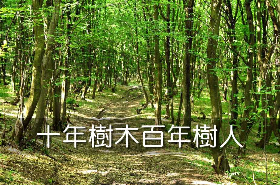 nature-1349108_1280-2
