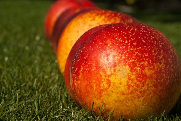 fruit-1605921_1280