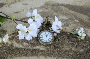 pocket-watch-1637392_1280
