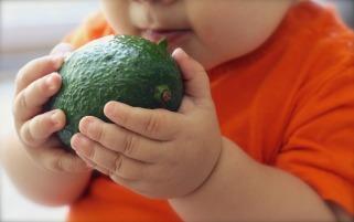 avocado-1476493_1280