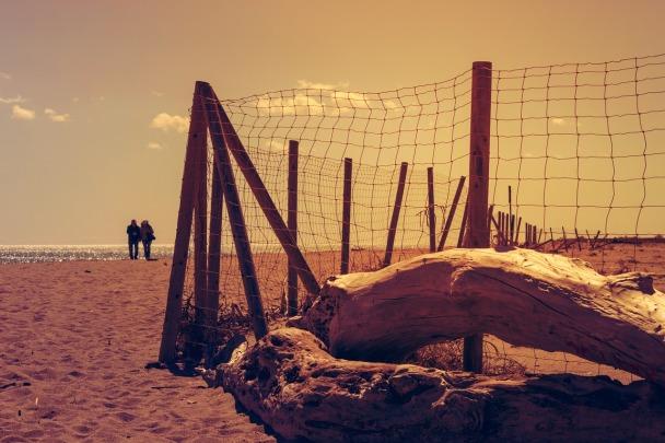 beach-1270412_1280