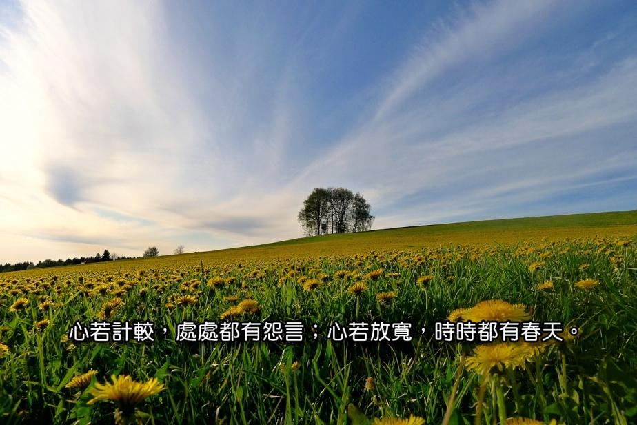 spring-1521695_1280-2
