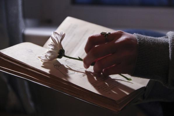 book-1535855_1280