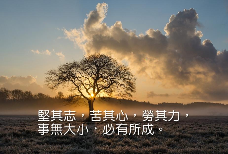 lone-tree-1934897_1280-2