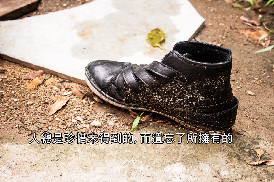 shoe-998394_1280-2