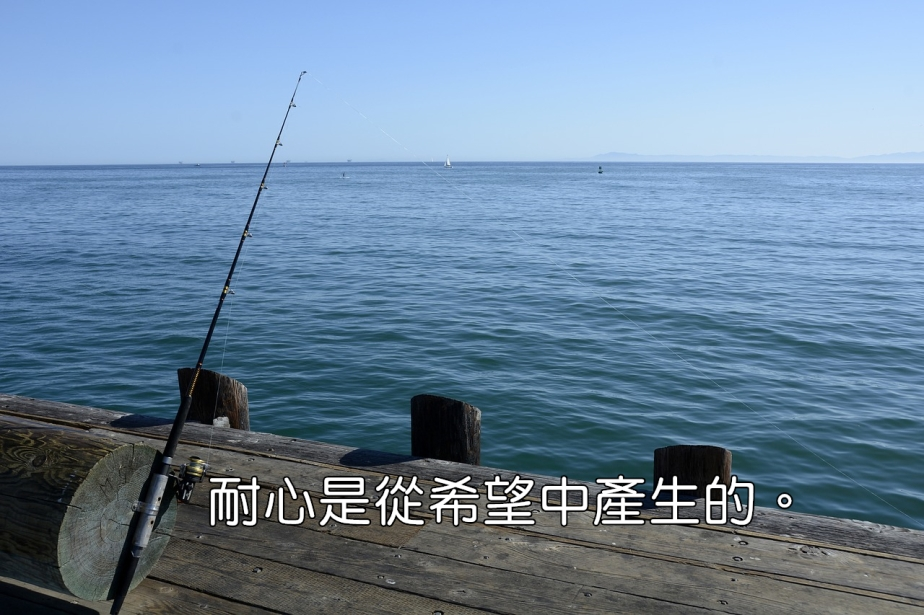 fishing-reel-1787081_1280-2