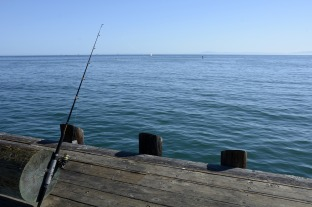 fishing-reel-1787081_1280