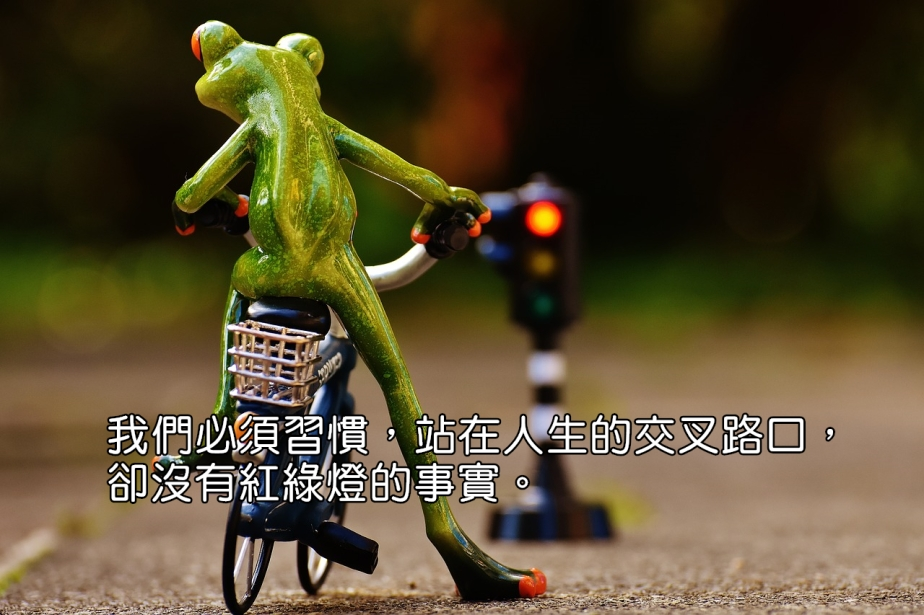 frog-1726766_1280-2