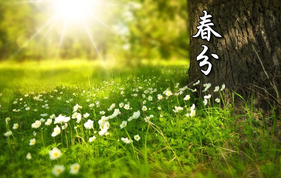 spring-276014_1280-2