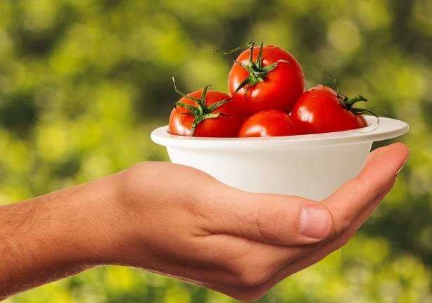 tomatoes-1993695_1280