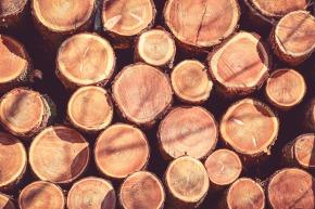 wood-2071179_1280