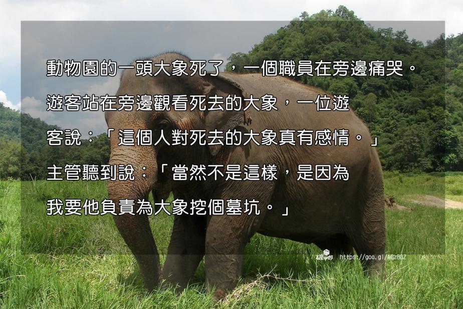 elephant-1686217_1280-2.jpg
