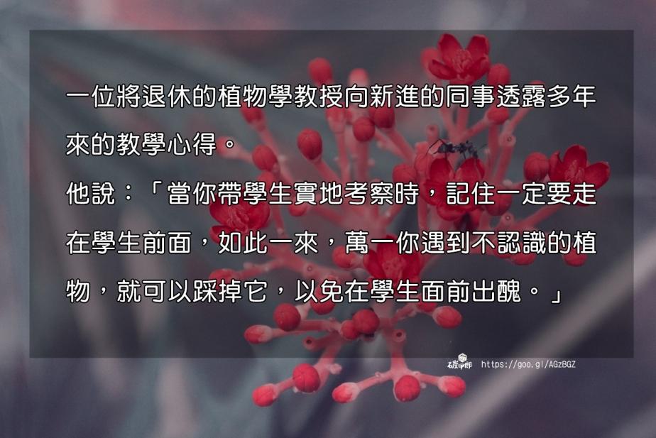 flower-2210444_1280-2