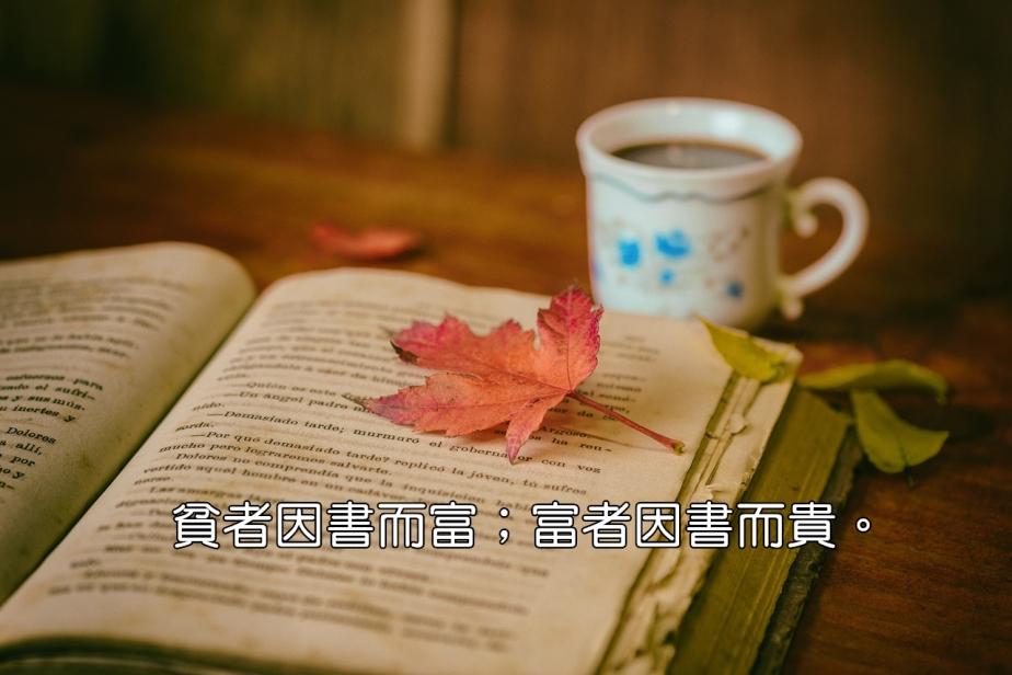 leaves-1076307_1280-2
