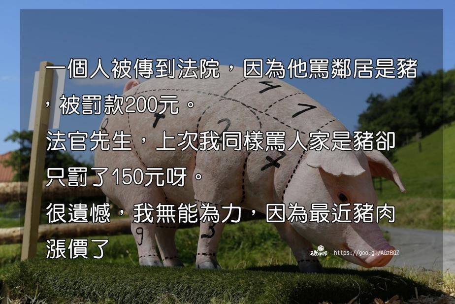 pig-1805416_1280-2