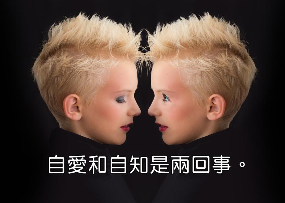 twin-553243_1280-2