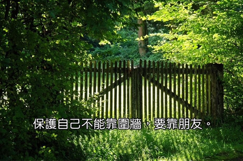 wood-fence-1610150_1280-2.jpg