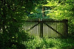 wood-fence-1610150_1280