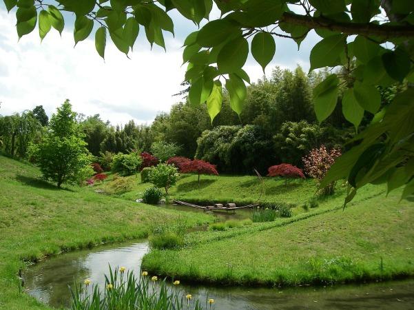 japanese-garden-1827736_1280