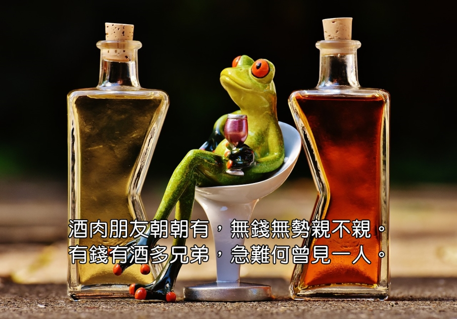 frogs-1650658_1280-2