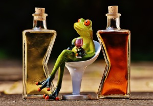 frogs-1650658_1280