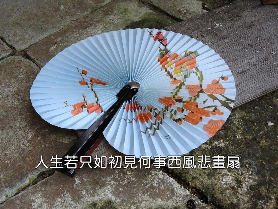 fan-876378_1280-2