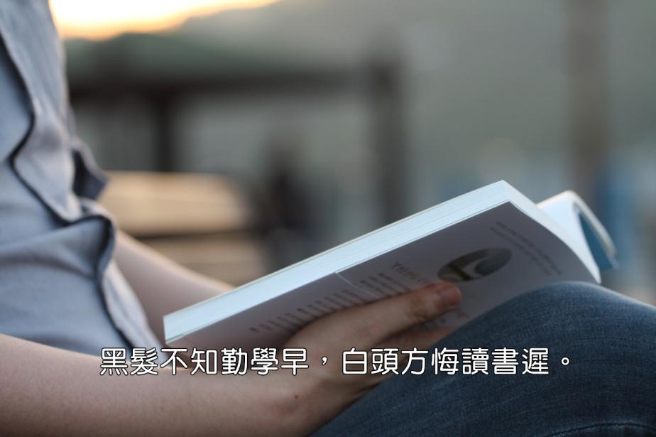 reading-1437841_1280-2