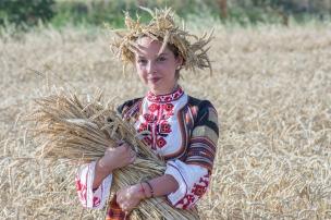 harvest-2460135_1280