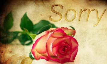 rose-1271216_1280