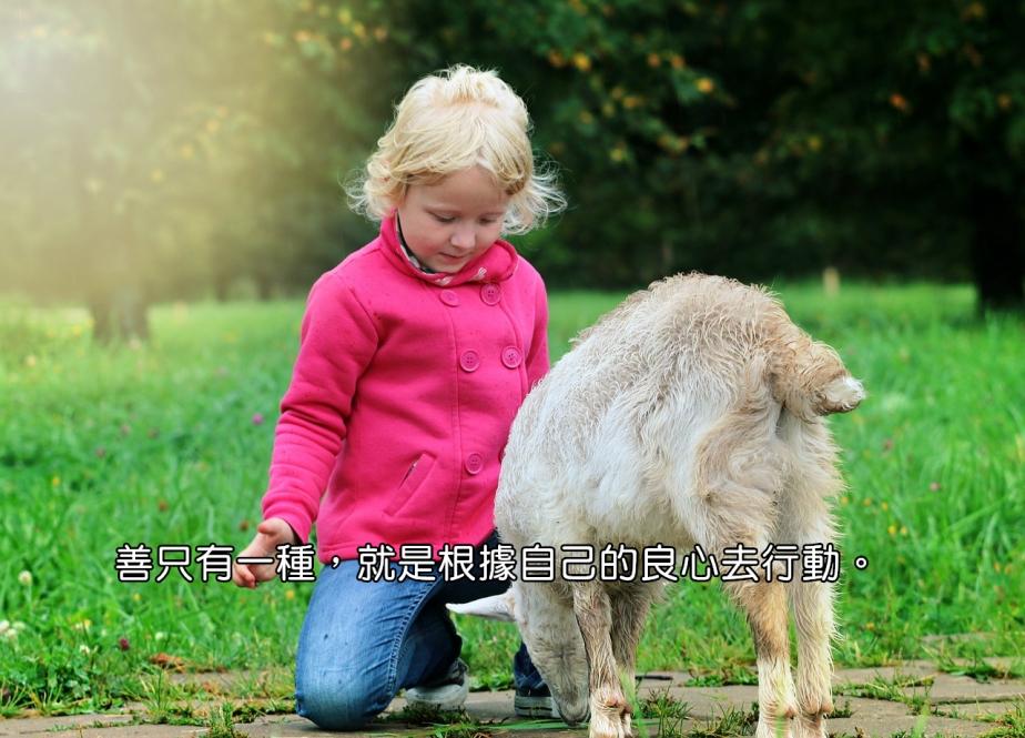 baby-1596873_1280-2