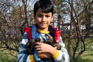 boy-and-dog-1876076_1280
