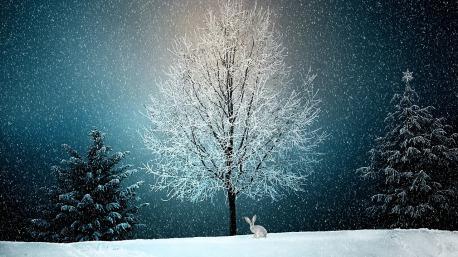 winter-2896970_1280