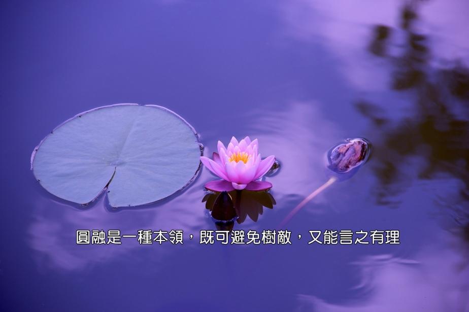 lotus-1205631_1280-2